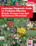 Landscape Diagnostics cover